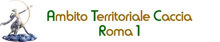 ATC Roma 1